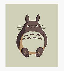 Grumpy Totoro Photographic Print