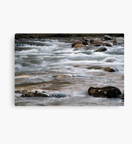 River Rapids Canvas Print
