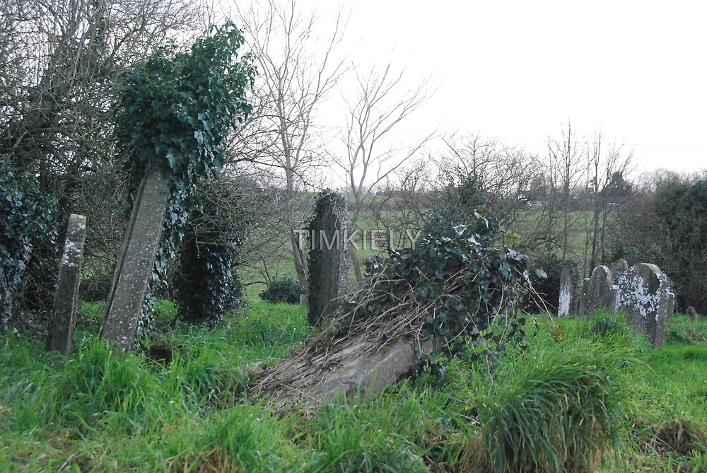 OLD GRAVE by TIMKIELY