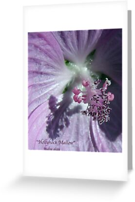 Hollyhock - Super Macro by AlienVisitor