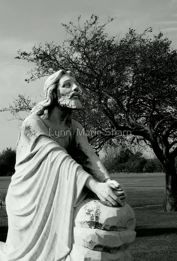 Jesus Praying by Marie Sharp