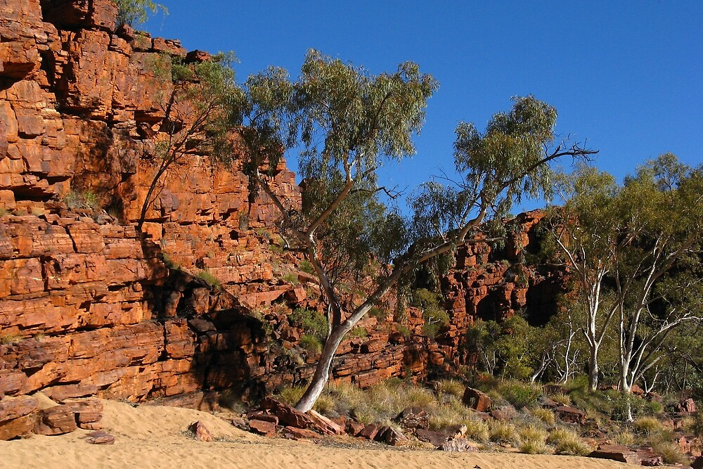Trephina Gorge Northern Territory by MalMcC