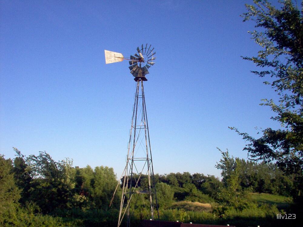 Windmill by lilv123