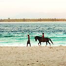 Beach Rider - Lombok, Indonesia by airdrie