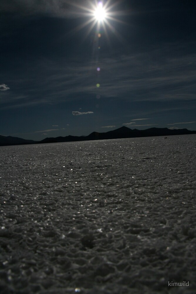 Salt Desert by kimwild