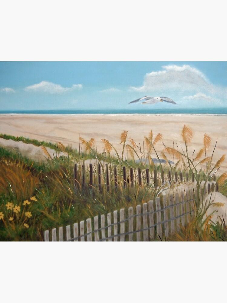 Soaring Seagull Beach Scene by irenebernhardt