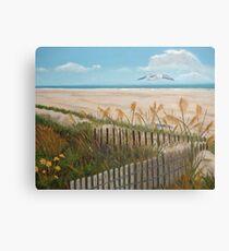 Soaring Seagull Beach Scene Canvas Print