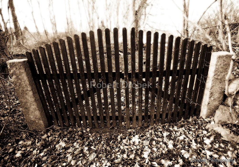 The Old Gate by Robert Drobek