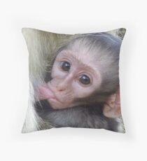 Top Up Time... Vervet Monkey Suckling - South Africa Throw Pillow