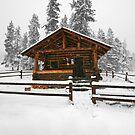 Cold Paradise by Dan Jesperson