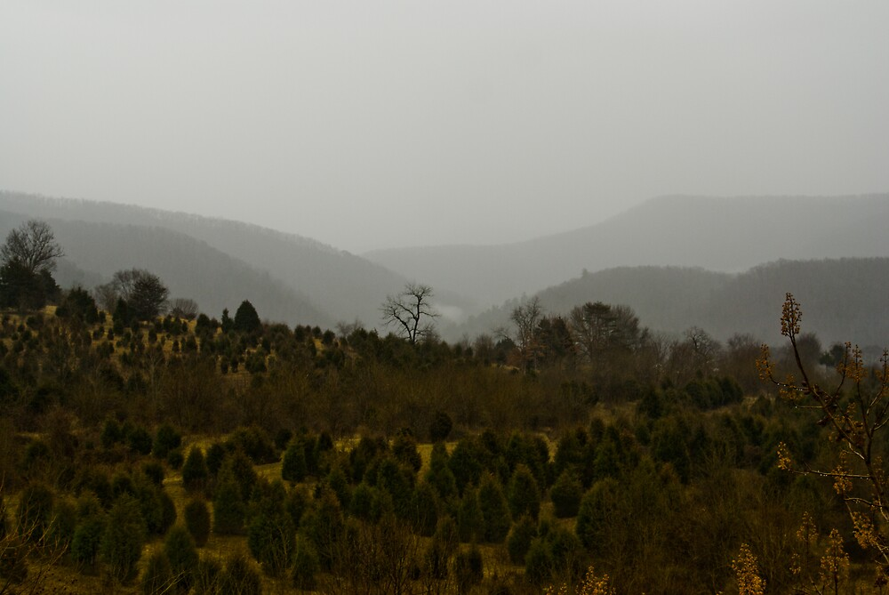 Jennings Creek Series - In The Distance by Rod  Adams