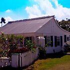 Traditional Caymanian Home by Rosemary Sobiera