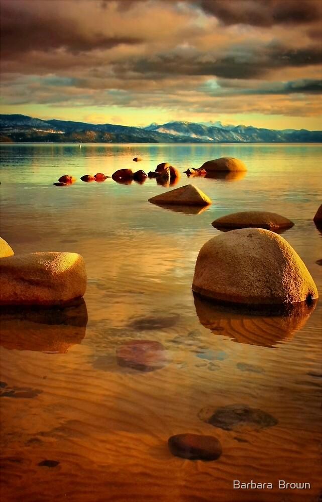 Tahoe Zen by Barbara  Brown