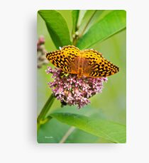 Butterfly Perched on Flowers Canvas Print