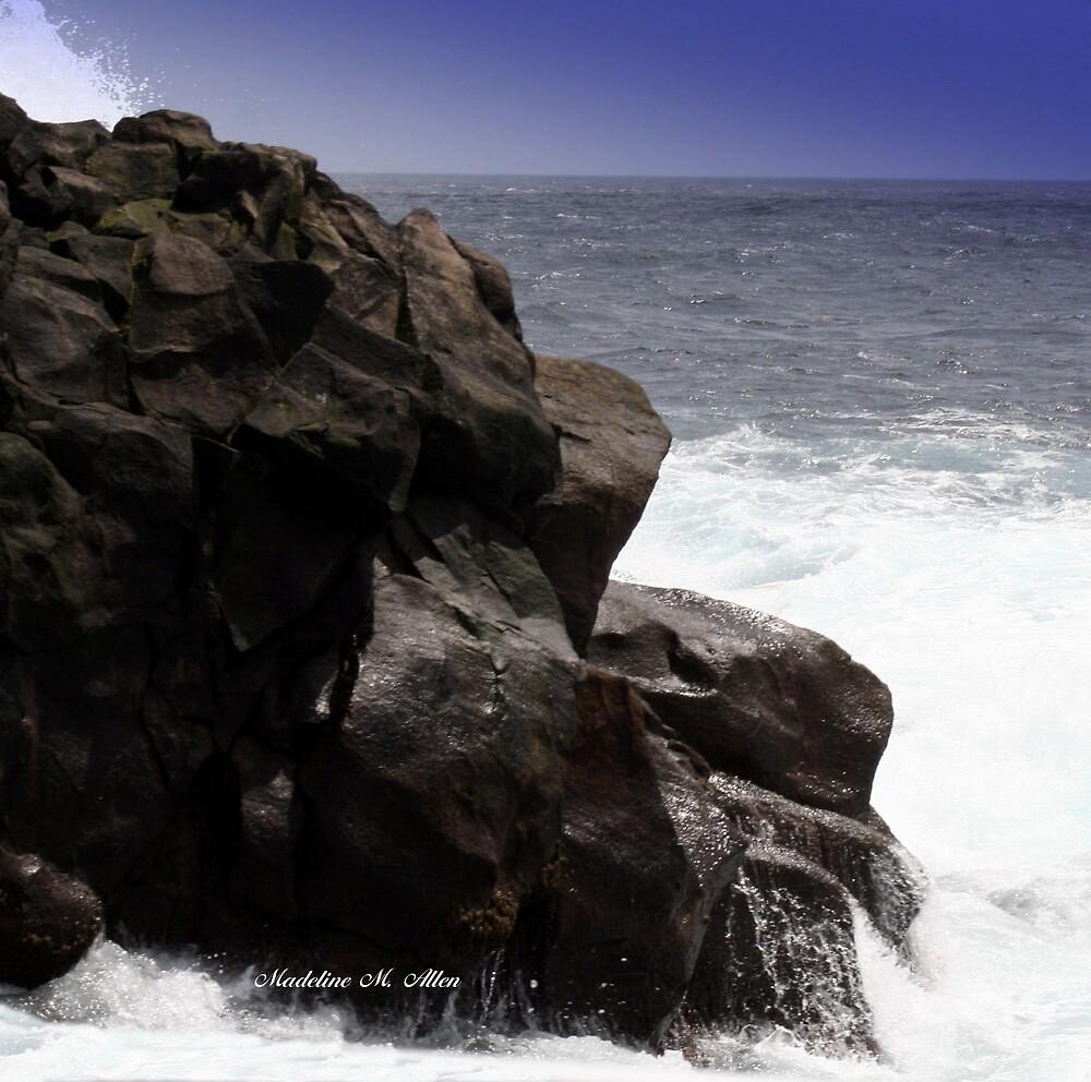 Puffin Island Point by Madeline M  Allen