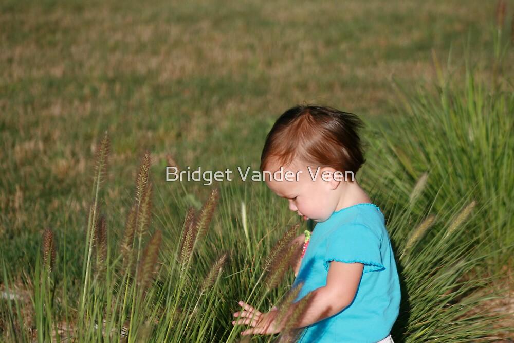 Discovering  by Bridget Vander Veen