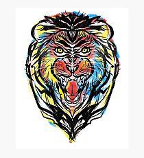 stencil lion Photographic Print