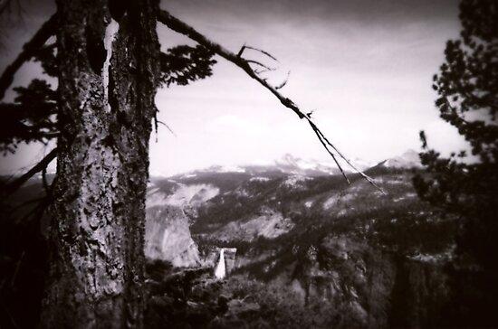 Yosemite by John Douglas
