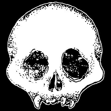 Distressed Skull by bclairer