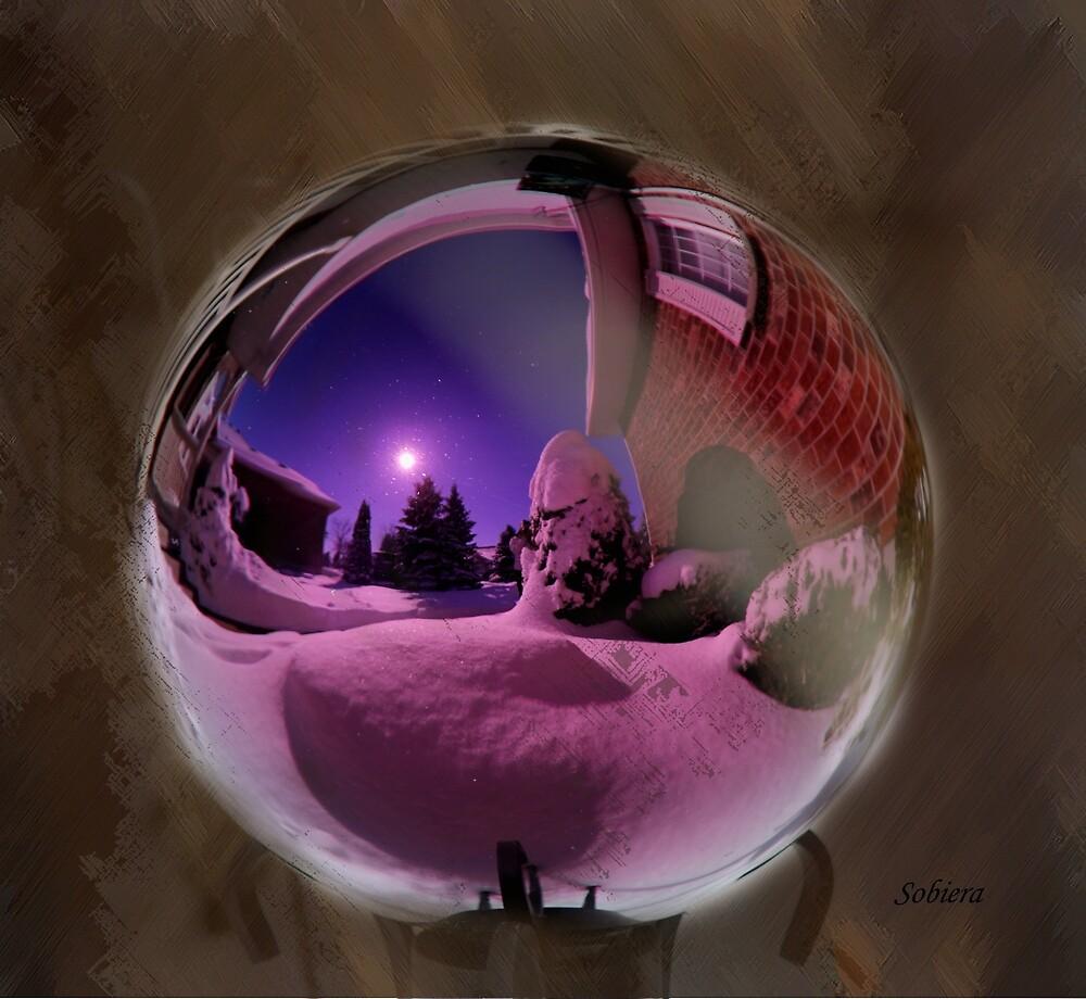Winter Gazing by Rosemary Sobiera
