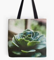 Succulent In The Window Tote Bag