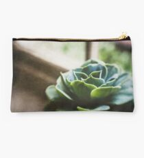 Succulent In The Window Studio Pouch