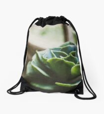 Succulent In The Window Drawstring Bag