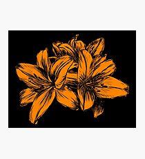 Orange Lilies Screen Print Photographic Print