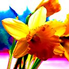 Technicolour Spring by LesleyJaneNixon