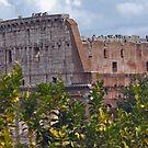 Roman Coliseum by Judson Joyce