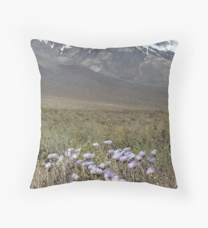 East Side Asters Throw Pillow