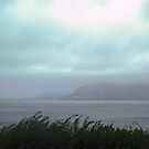 Rainy day in Donegal, Ireland by Shulie1