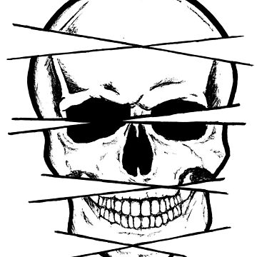 Skull and crossed lines by NemJames