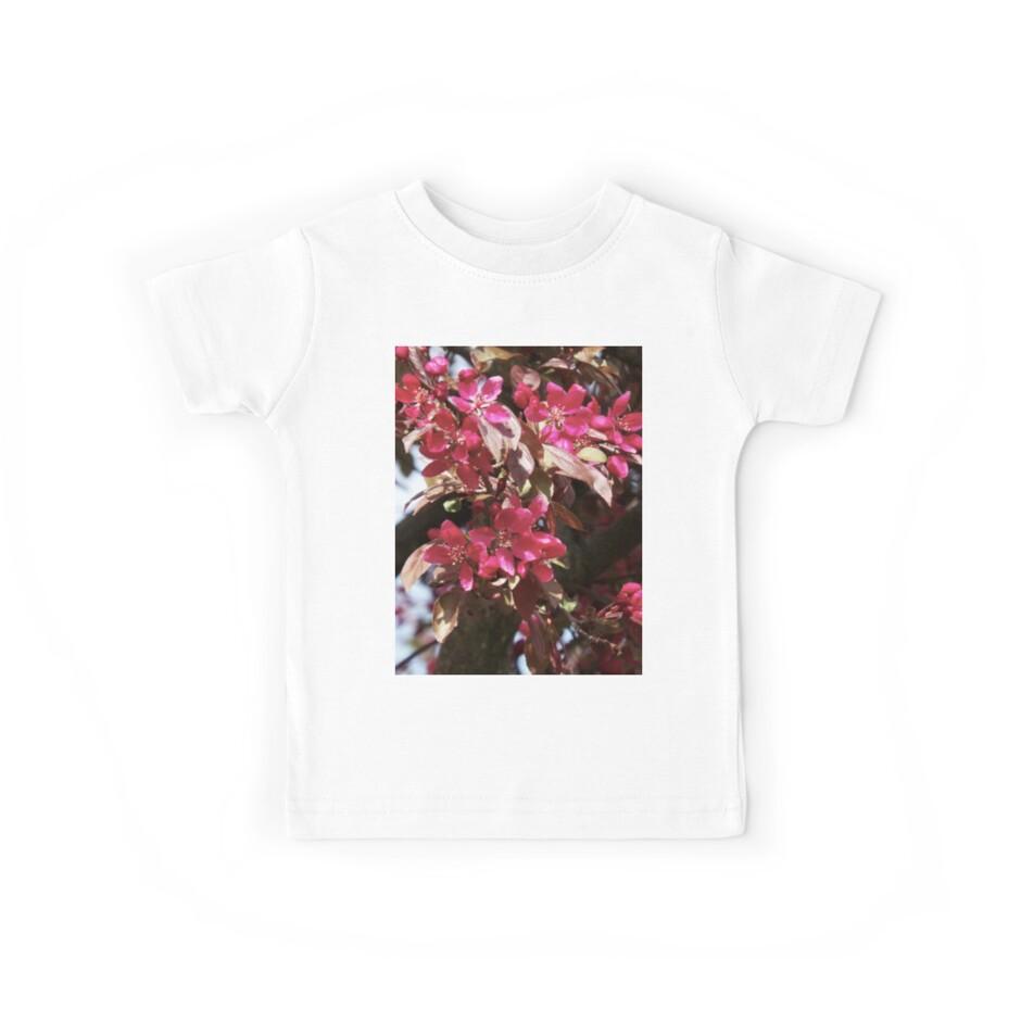 Magenta Blossoms  by Quinn-Draws