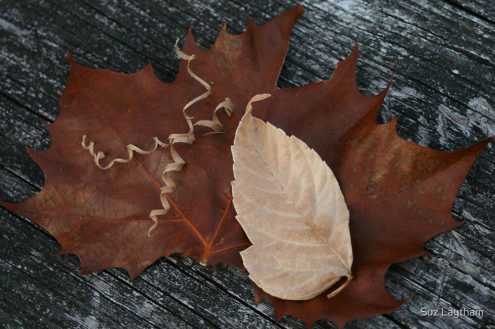 Leafing 2007 by Suz Laytham