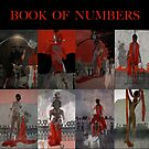 BOOK OF NUMBERS by Jim Ferringer