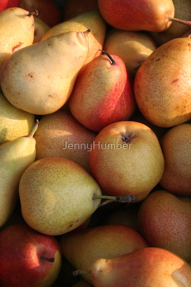 Pears in sunlight by JennyHumber