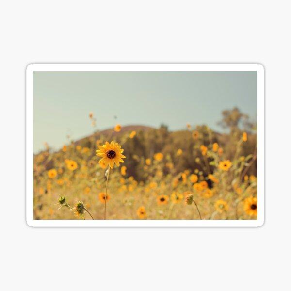 Many Flowers Sticker