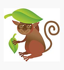 A TARSIER wild animal of the Phillipines hiding under leaves Photographic Print