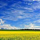 1589 Painted sky by Hans Kawitzki