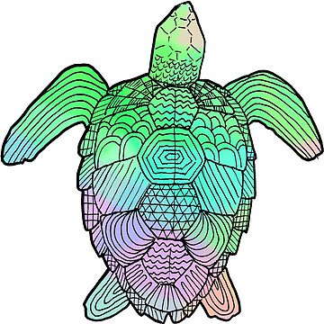 Turtle by MalloryNoble