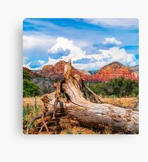 Sedona Arizona Western Landscape 1x1 Canvas Print