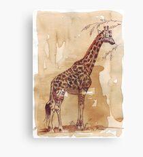 Lean and tall Canvas Print