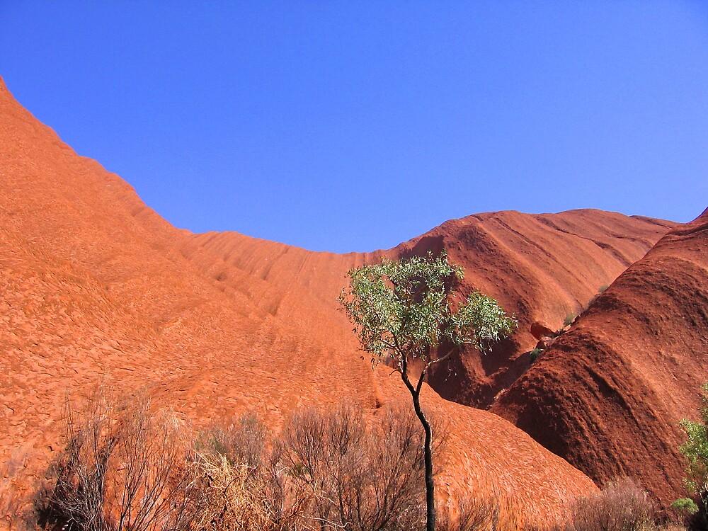 Uluru by SinaStraub
