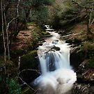 Torc River Falls 2 by InShinFrog