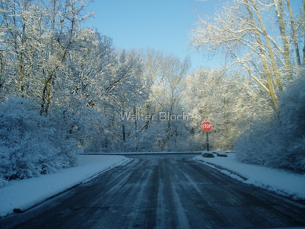 Road to Snow by Walter Bloch