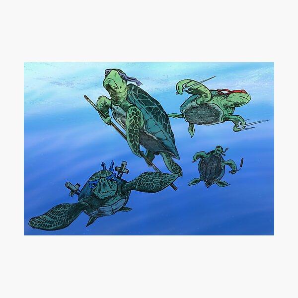 Real Ninja Turtles Photographic Print