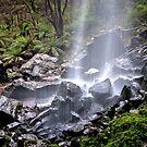 1580 Bindaree Falls by Hans Kawitzki