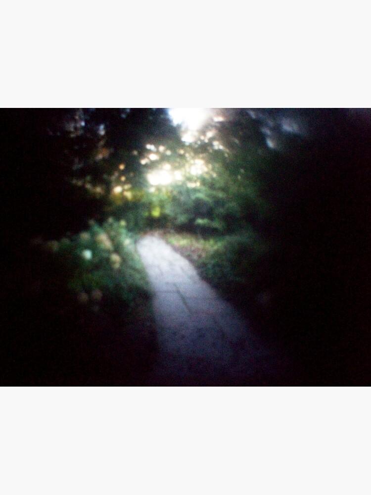 path by slagseed