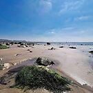 Church Beach - Lyme Regis by Susie Peek